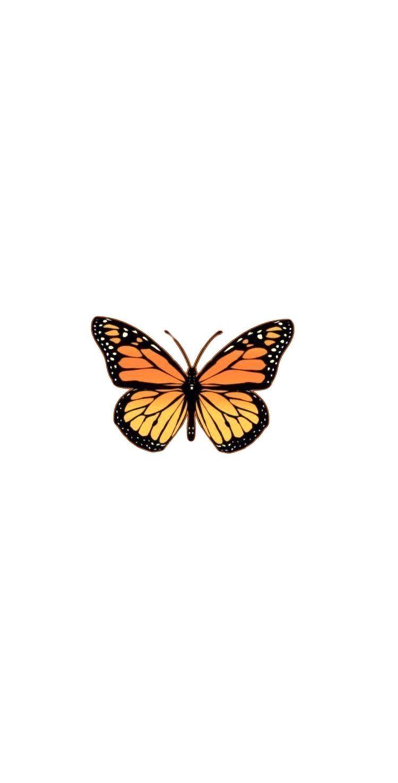 Pinterest Alexisbenoy In 2020 Butterfly Wallpaper Iphone Butterfly Wallpaper Iphone Wallpaper Vintage