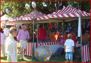 A Perfect Party Palm Beach West Palm Beach Bounce House Water Slide And Party Rentals Boca Raton Delray Boynto Boynton Beach West Palm West Palm Beach