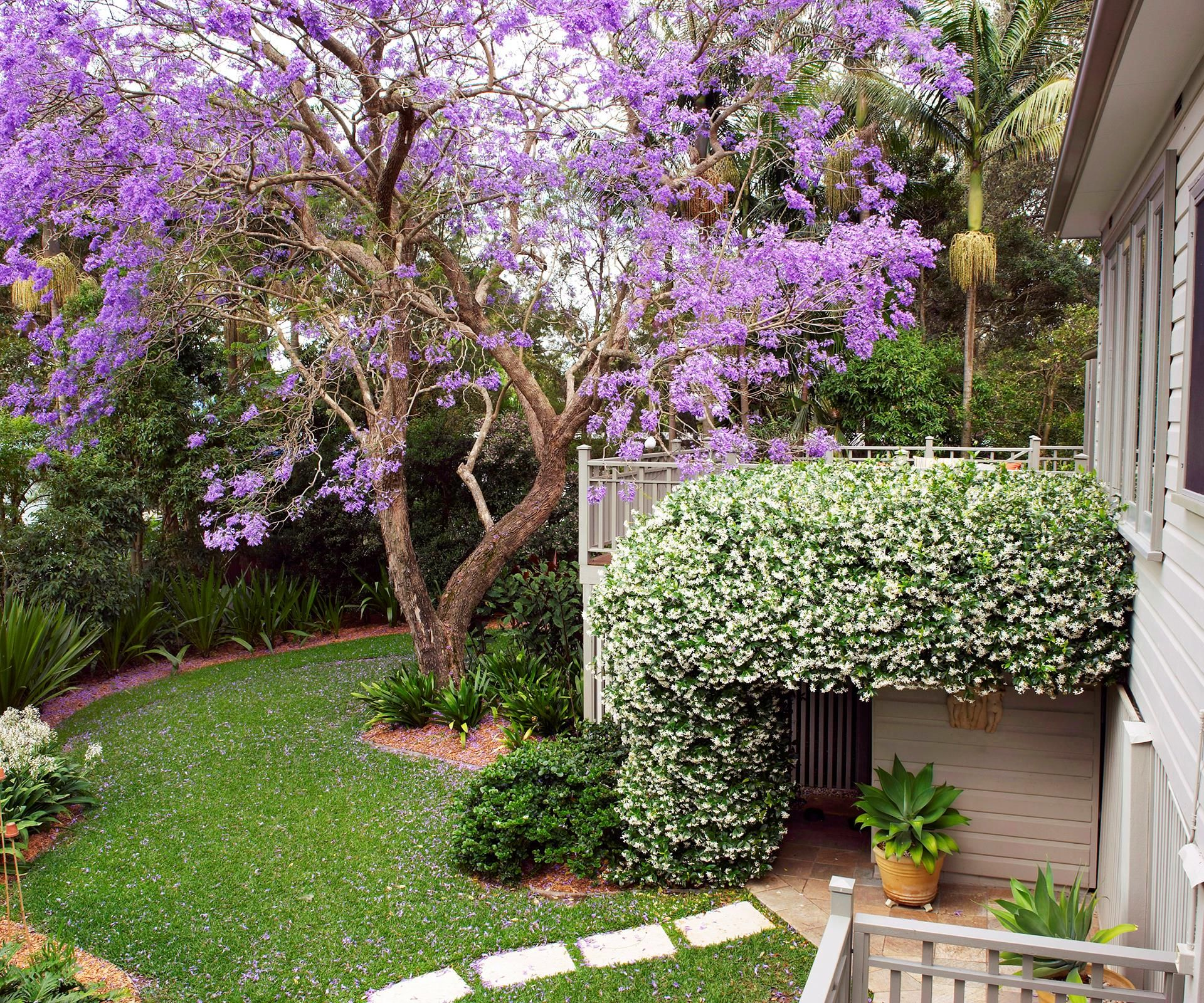 Louise And Greg S Country Garden Escape Small Garden Design Garden Back Gardens