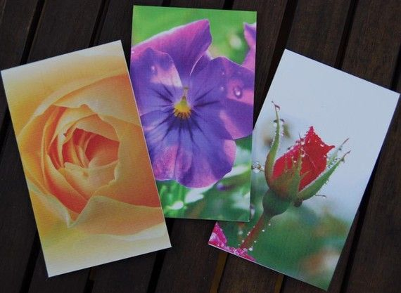 Notepads  Flower photographs viola and rose design by NewCreatioNZ, $12.00