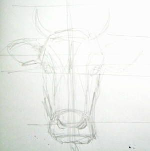 Cow head sketch | Cow drawing, Highland cow painting, Cow ...