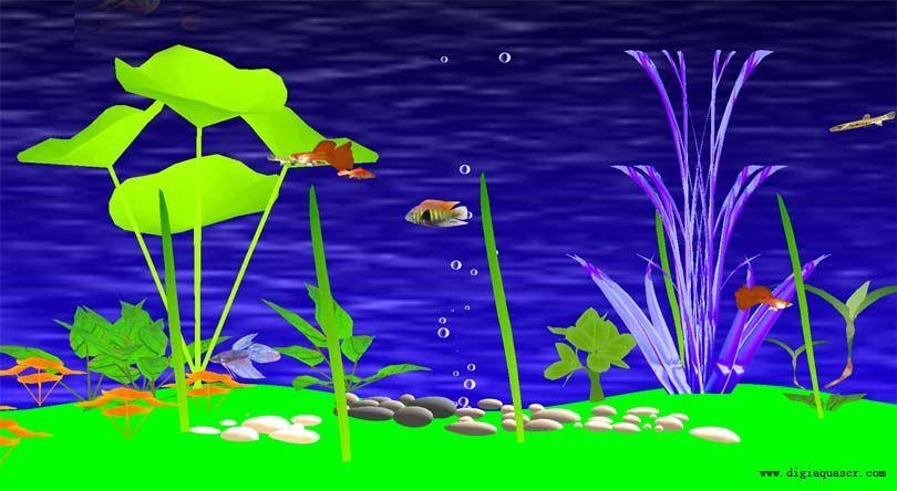 Freshwater Fish Aquarium Screen Saver 1 4 1 Screenshot With Images Freshwater Fish Aquarium Fish Savers