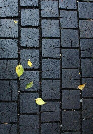 Дорога листья