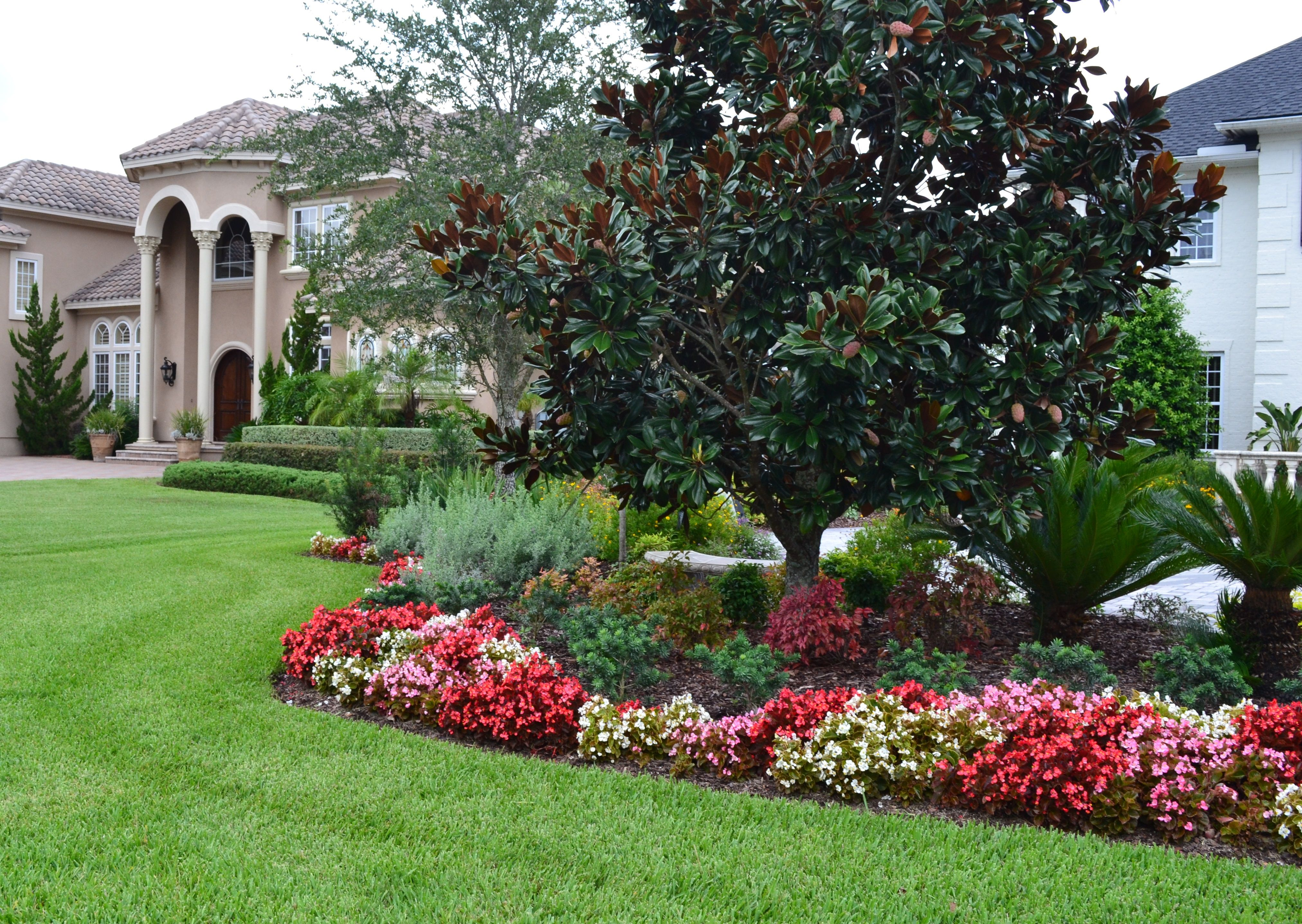 Landscaping idea begonia flower bed gives great contrast for Flower garden landscape