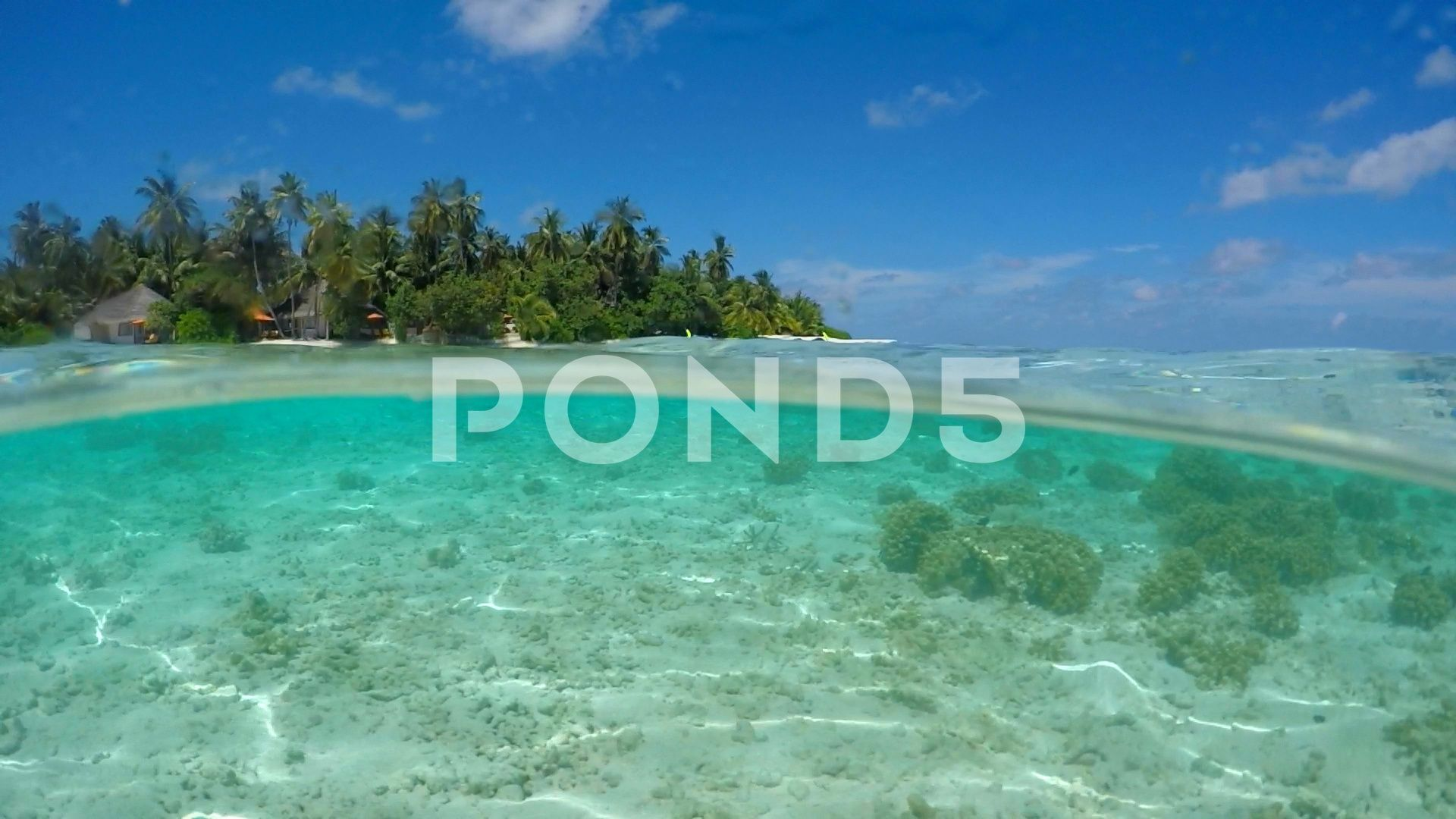 Aerial Drone View Of A Motor Boat Going To A Scenic Tropical Island In The Maldi Stock Footage Motor Boat View Aerial Aerial Drone Motor Boats Aerial