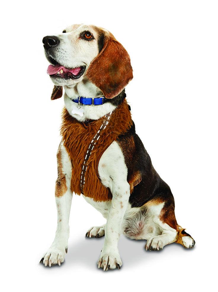 Star Wars Chewbacca Dog Harness Dog Harness Chewbacca Dog