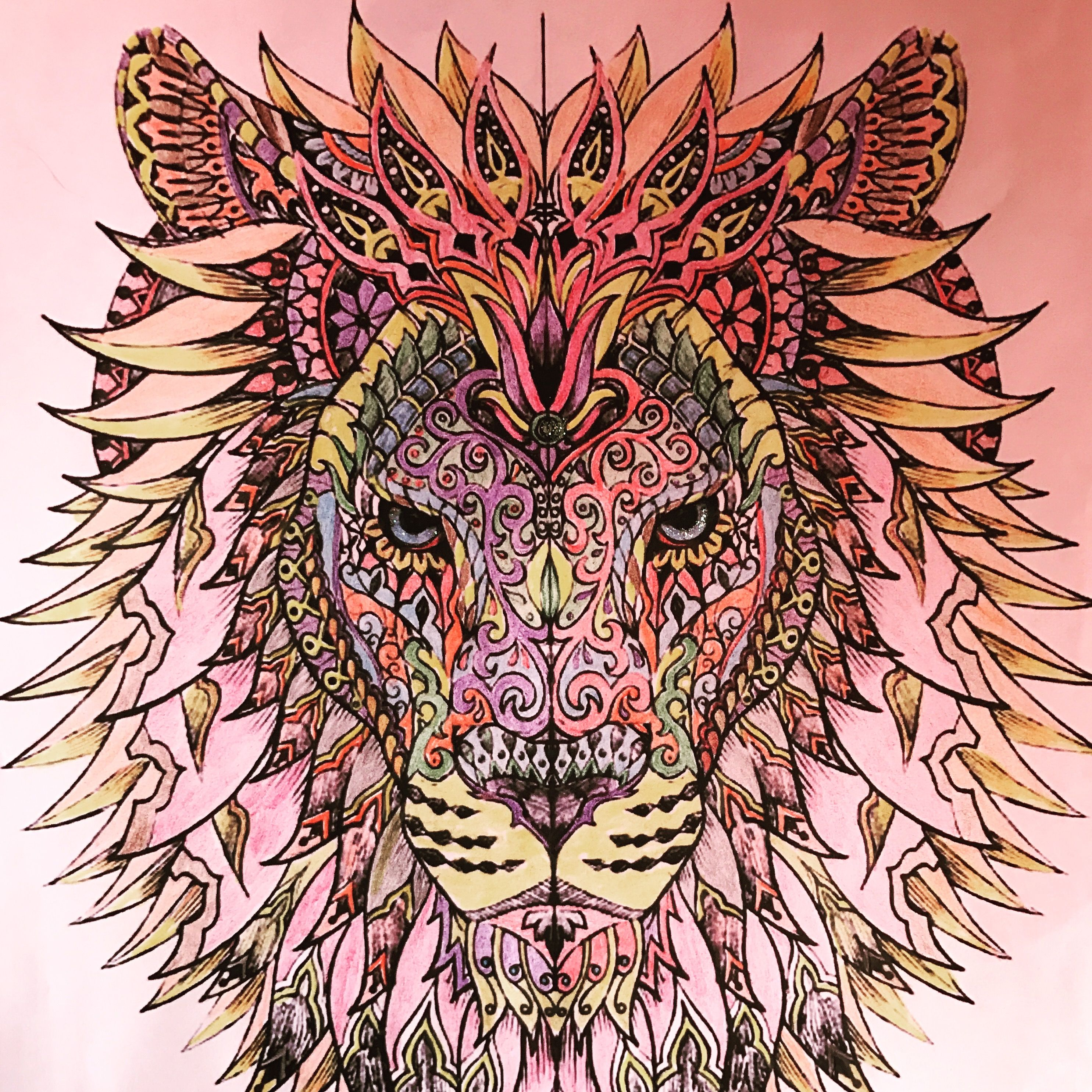 2/4/17 Beautiful lion that I colored with colored pencils. | Adult ...