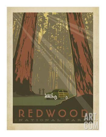Redwood Art Print by Anderson Design Group at Art.com