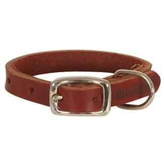 Brown leather house collar