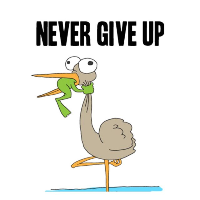 Never, but never, give up