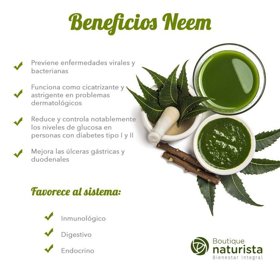 Sirve el neem para bajar de peso
