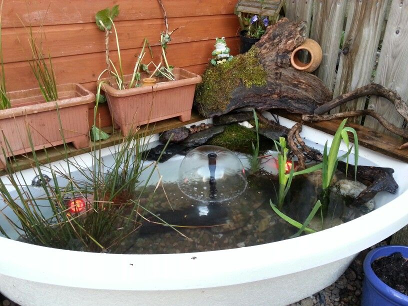Corner bath pond bathtub ponds pinterest corner bath for Garden pool from bathtub