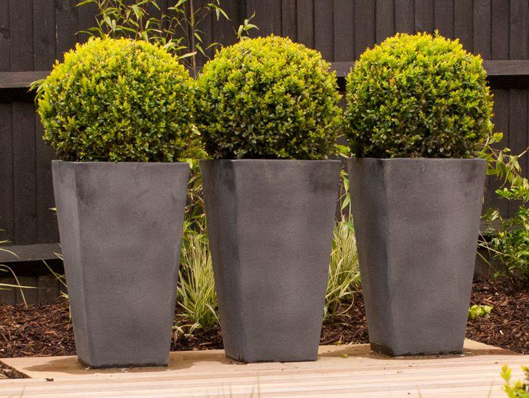 Contemporary Grey Fibreclay Planters With Box Balls