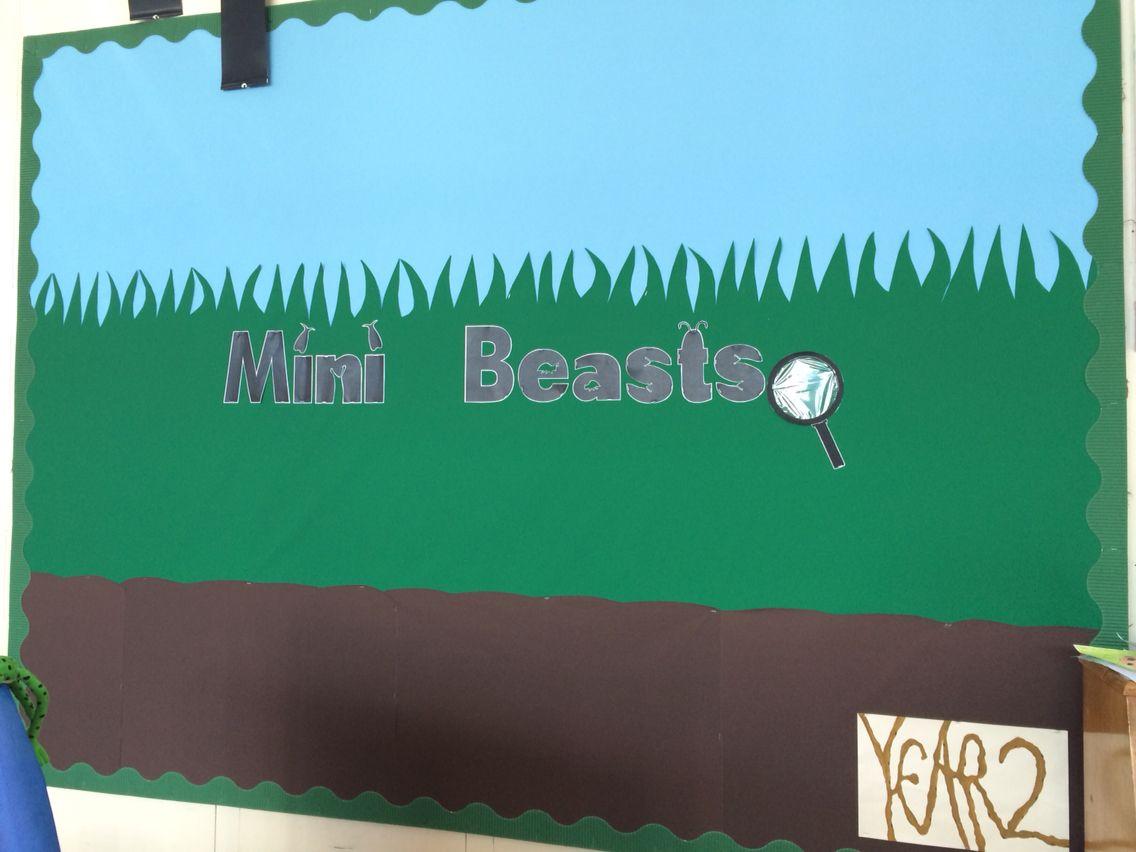 Mini beasts display board | Junior Infants | Pinterest | Mini beasts ...