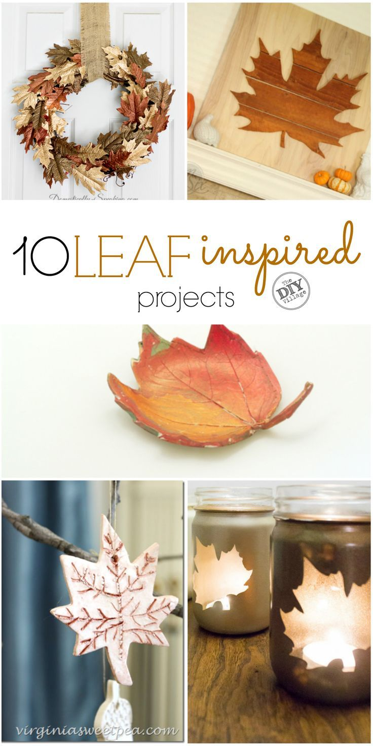 10 Leaf Inspired Projects   Fall leaves, Leaves and Craft