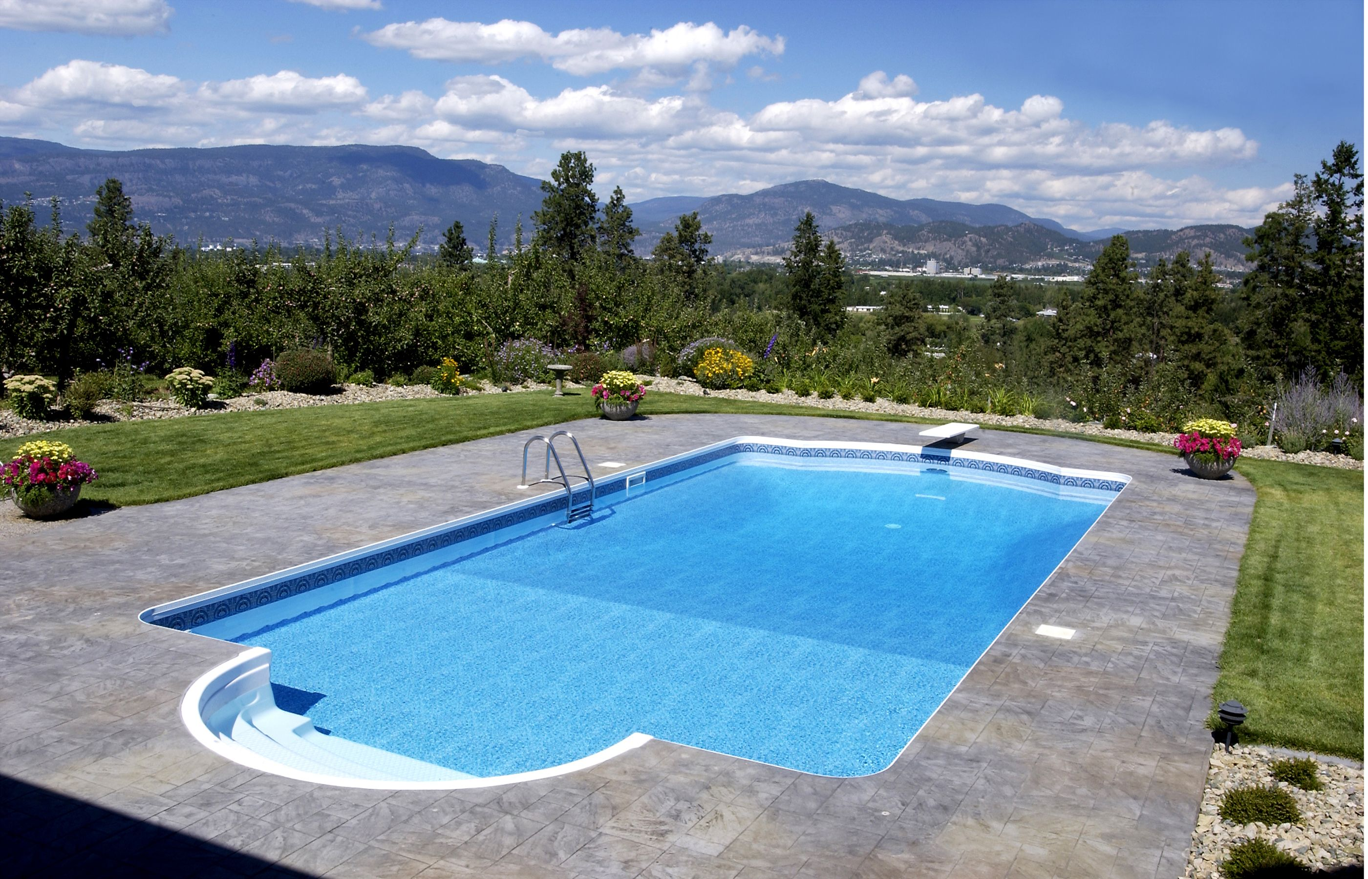 paddock swimming pool company 17 best ideas about swimming pool - Swimming Pools Design And Construction