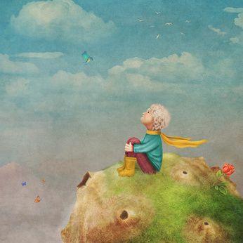 Die Rose (Der kleine Prinz) - Schöne Lesung zur Hochzeit ...