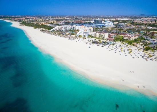 Book Bucuti Tara Beach Resort Aruba Palm Eagle On Tripadvisor