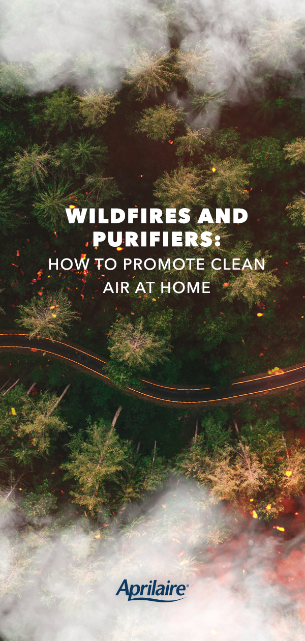 Wildfires and Purifiers How to Promote Clean Air at Home
