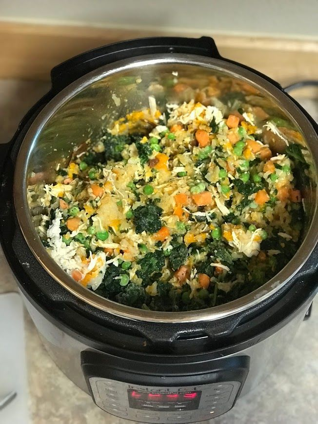 Easy, Healthy Instant Pot Dog Food Recipe Dog food
