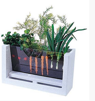 My First Garden: 5 Innovative Indoor Apartment Gardening Ideas ...