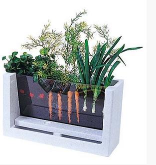 My First Garden 5 Innovative Indoor Apartment Gardening