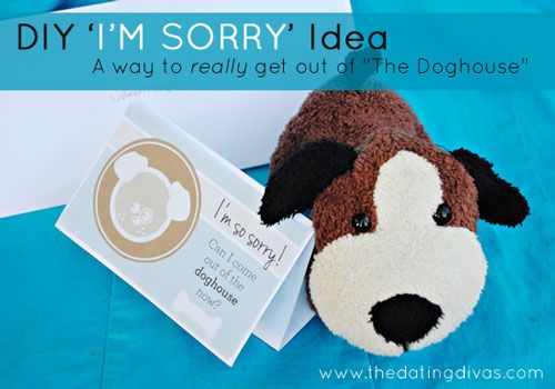 The Doghouse - apology letter to family