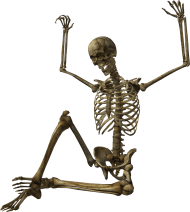 Skeleton Png Image Skelety Png Image With Transparent Background Png Free Png Images Png Images Best Background Images Skeleton
