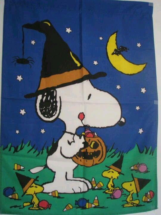Love Snoopy & Woodstock!