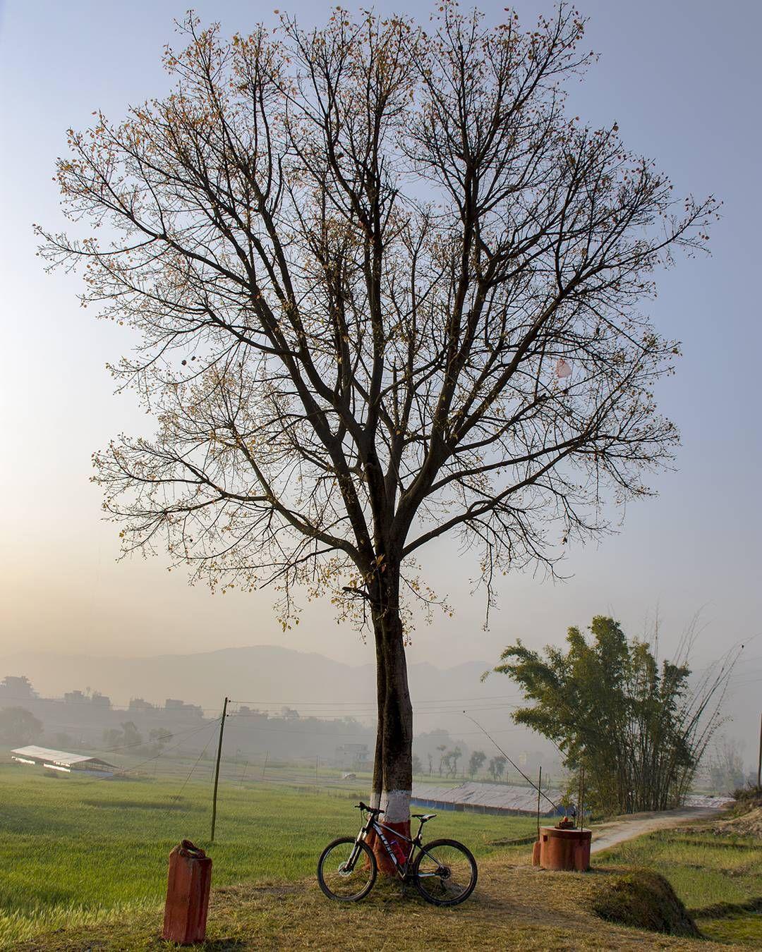 Good morning from Madhyapur Thimi…