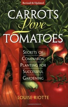 c44f65d96a6dfb6ceb0a57087550e2d0 - Secrets Of Companion Planting For Successful Gardening