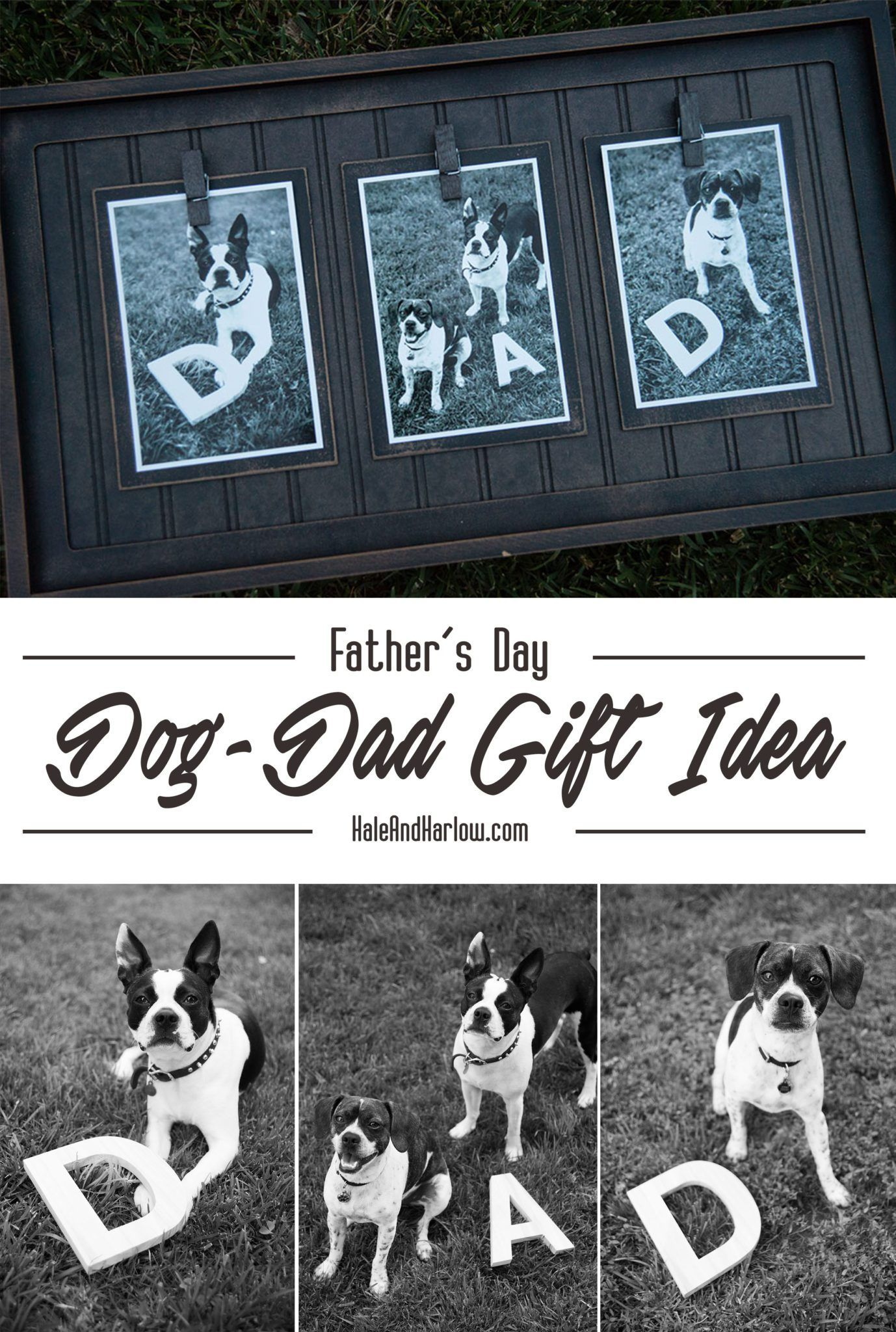 Gifts From The Dog Part - 26: Your Search For Fatheru0027s Day Gift Ideas Ends Here! Recognize All Those Dog  Dads With