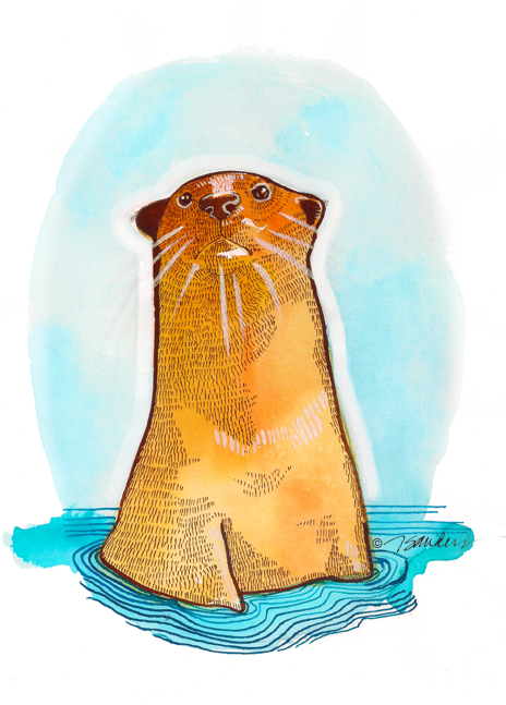 """Fine Art Daily - October 15, 2014 O is for Otter  A WATERY BLISS  As busy as an ice cream freezer, On a Sunday getting hotter, Happy is the honey eater- The busy ocean otter, Floating alongside Teter, On a sea full of water.""""  ― Giorge Leedy #inktober"""