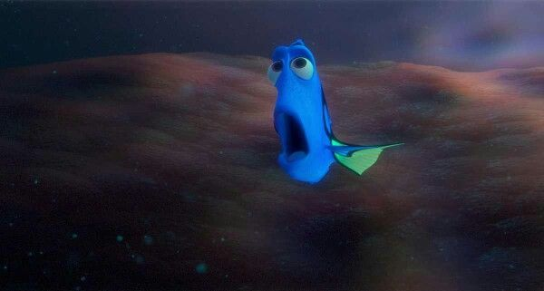 Dory And Squishy Hey Little Guy