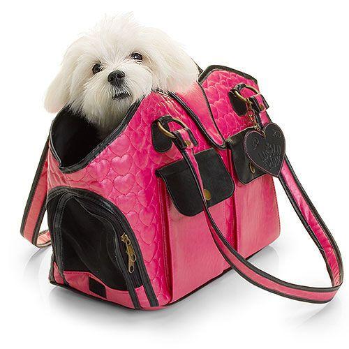 10 000 Fan Giveaway Giveaway 2 Dog Carrier Bag Dog Purse
