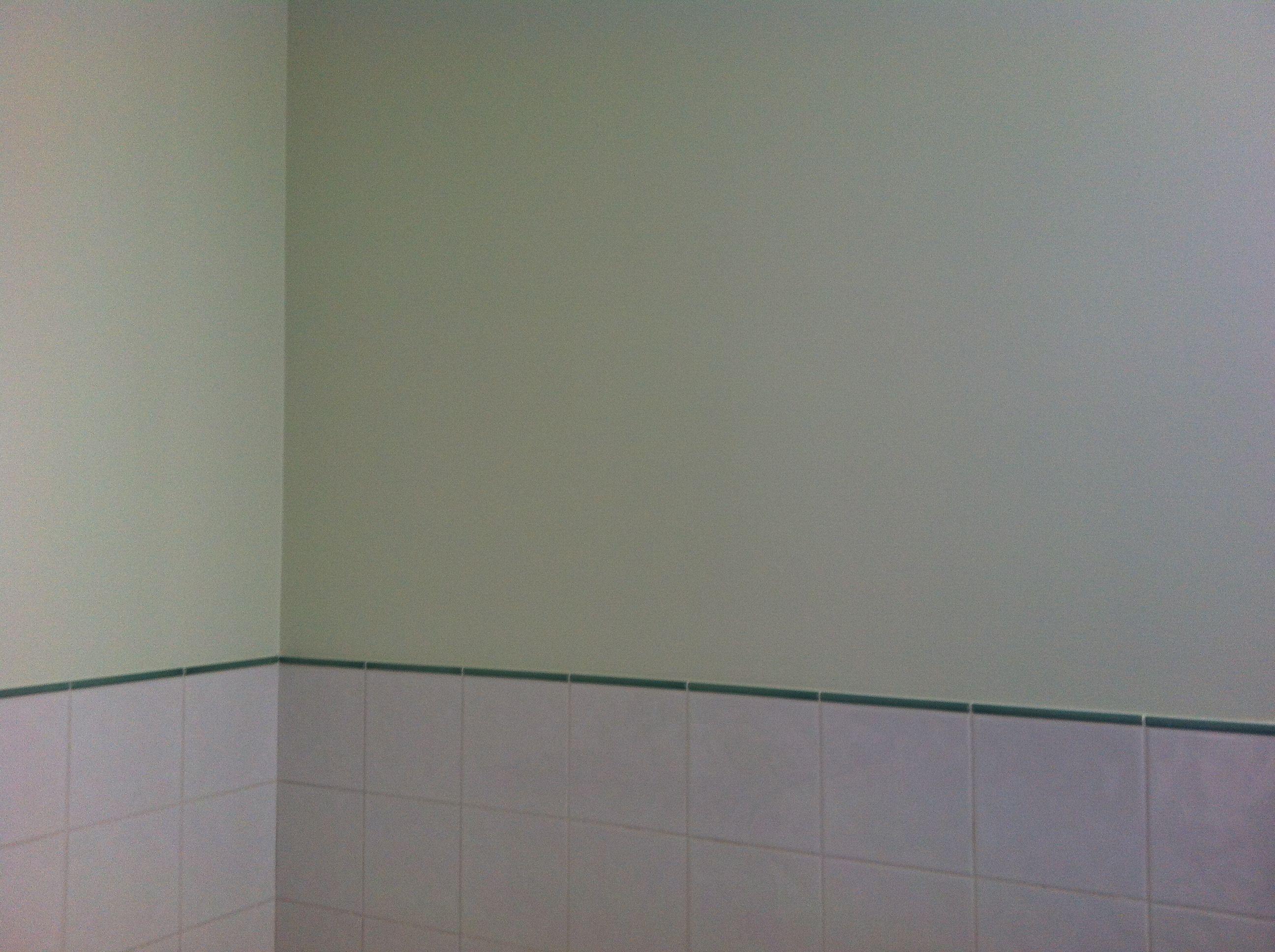 Dulux Apple White In En Suite Bathroom Bathroom Paint