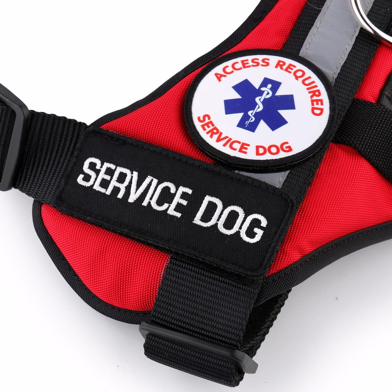 ALL ACCESS CANINE Service Dog ESA Dog Therapy Dog