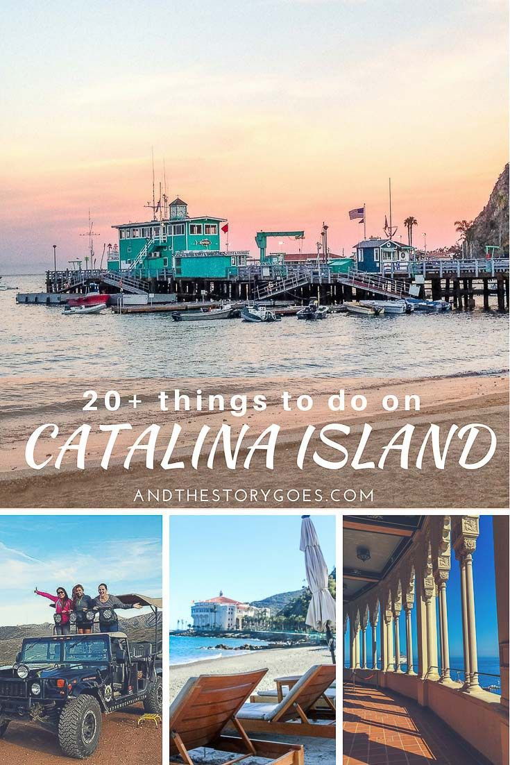 List Of 20 Things To Do On Catalina Island Everything From Hiking To Zip Lining To Lounging At Catalina Island Catalina Island California California Travel