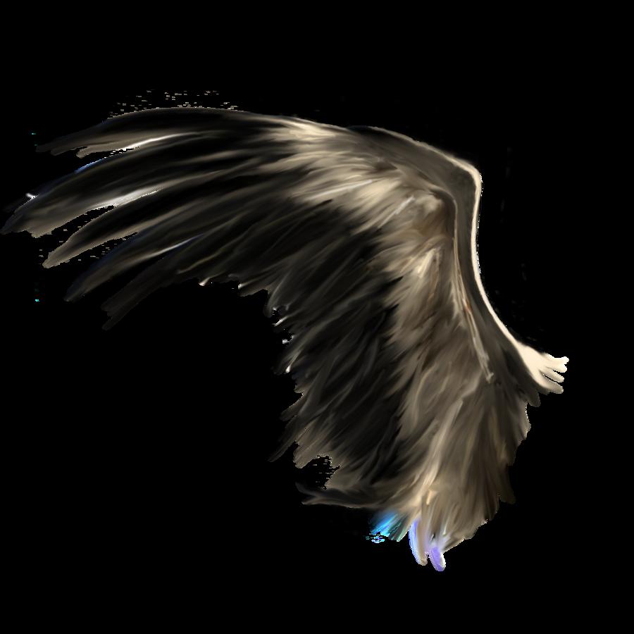 Black Wings Png Image Wings Png Black Wings Angel Wings Art