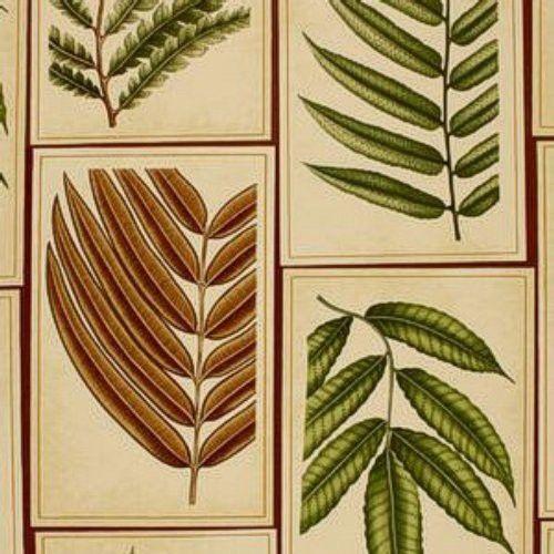 Schumacher Montserrat Leaf Sepia Fabric
