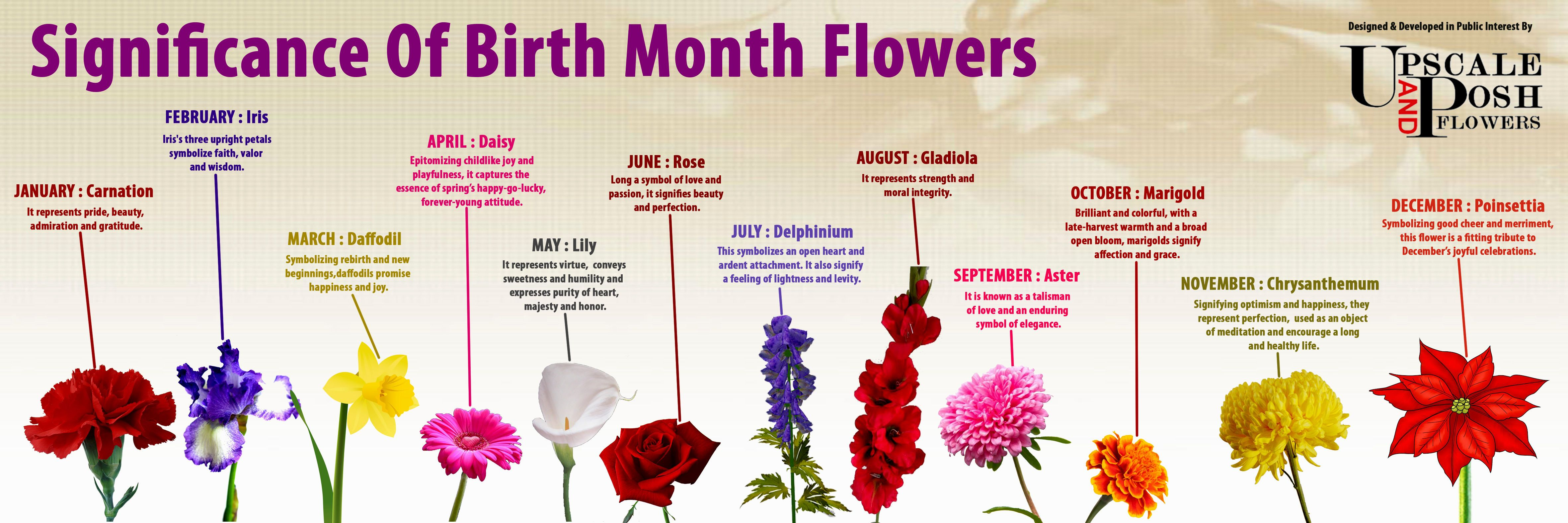 Birth Month Flowers Meaning Tattoo Inspiration Pinterest Birth