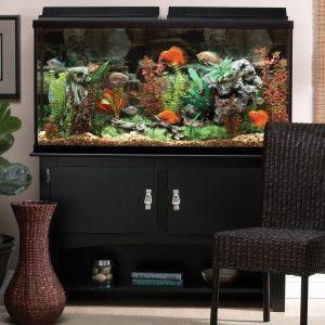 My Tank Marineland 60 Gallon Heartland Aquarium Ensemble Aquariums Petsmart Fish Tank Aquarium Aquarium Stand