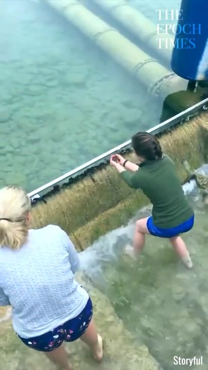 These ladies helped little duck baby to return back to mother. ❤️ please follow Animals Board for more videos