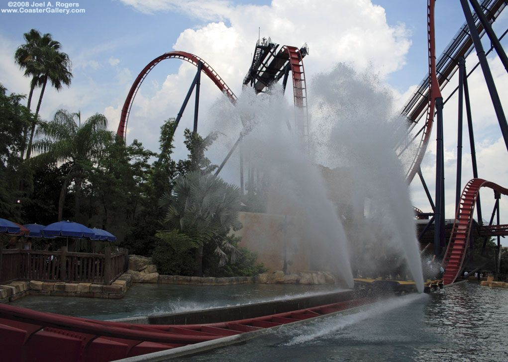 c4548fdca96c582b5106fabc8cefc6b8 - Busch Gardens Tampa Drop Off Area