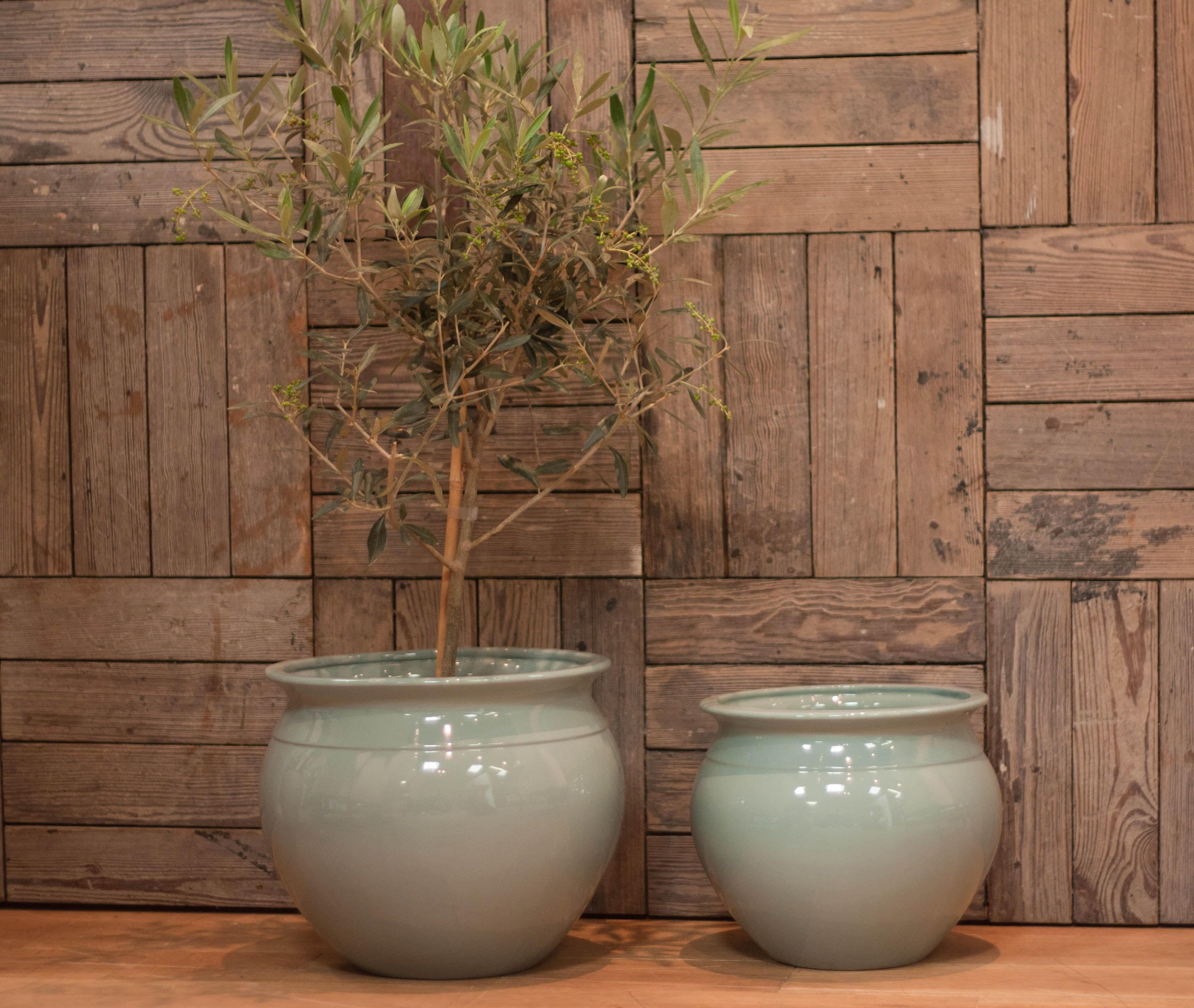 Indoor Wall Planters Decor Duck Egg Blue Indoor Fine Ceramic Planter Cache Pot In Two