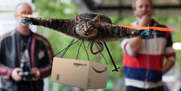 Cats Courier Service