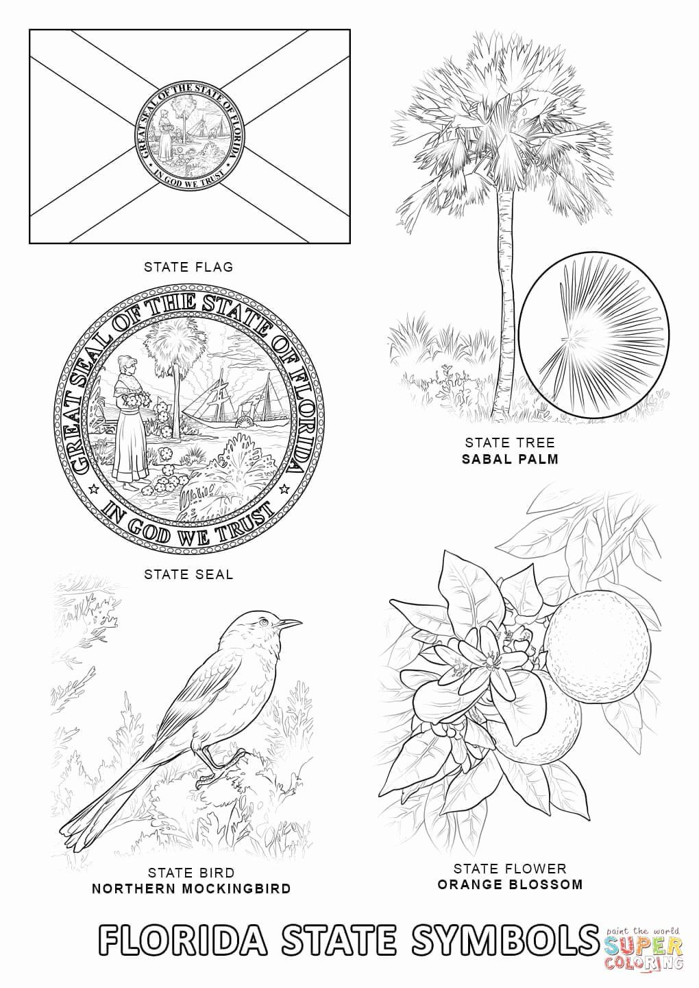 Florida State Seal Coloring Page Coloring Pages Free Printable
