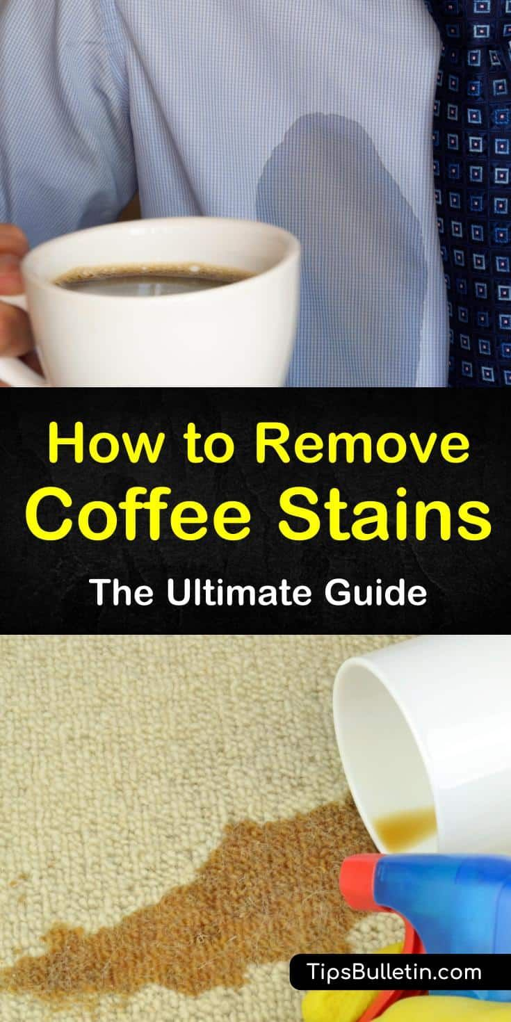 41+ Will coffee stain clothes trends
