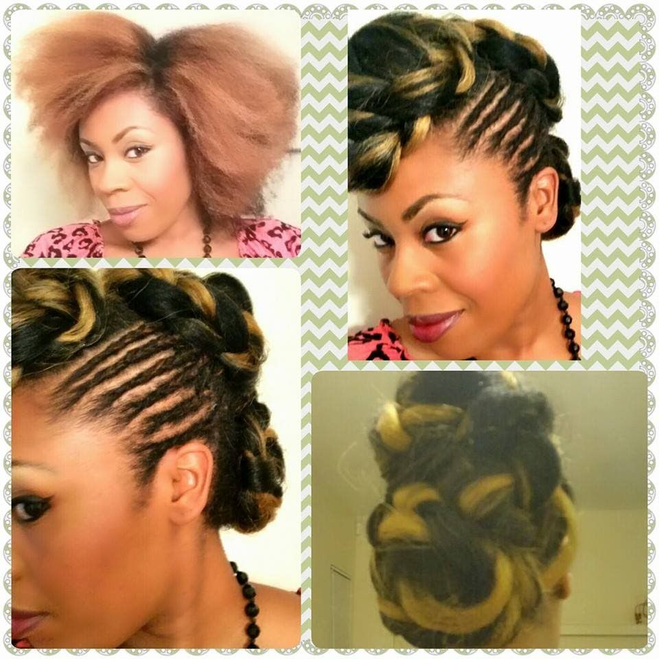 styles to do with kanekalon hair hair updo kanekalon braiding hair protective style 1598