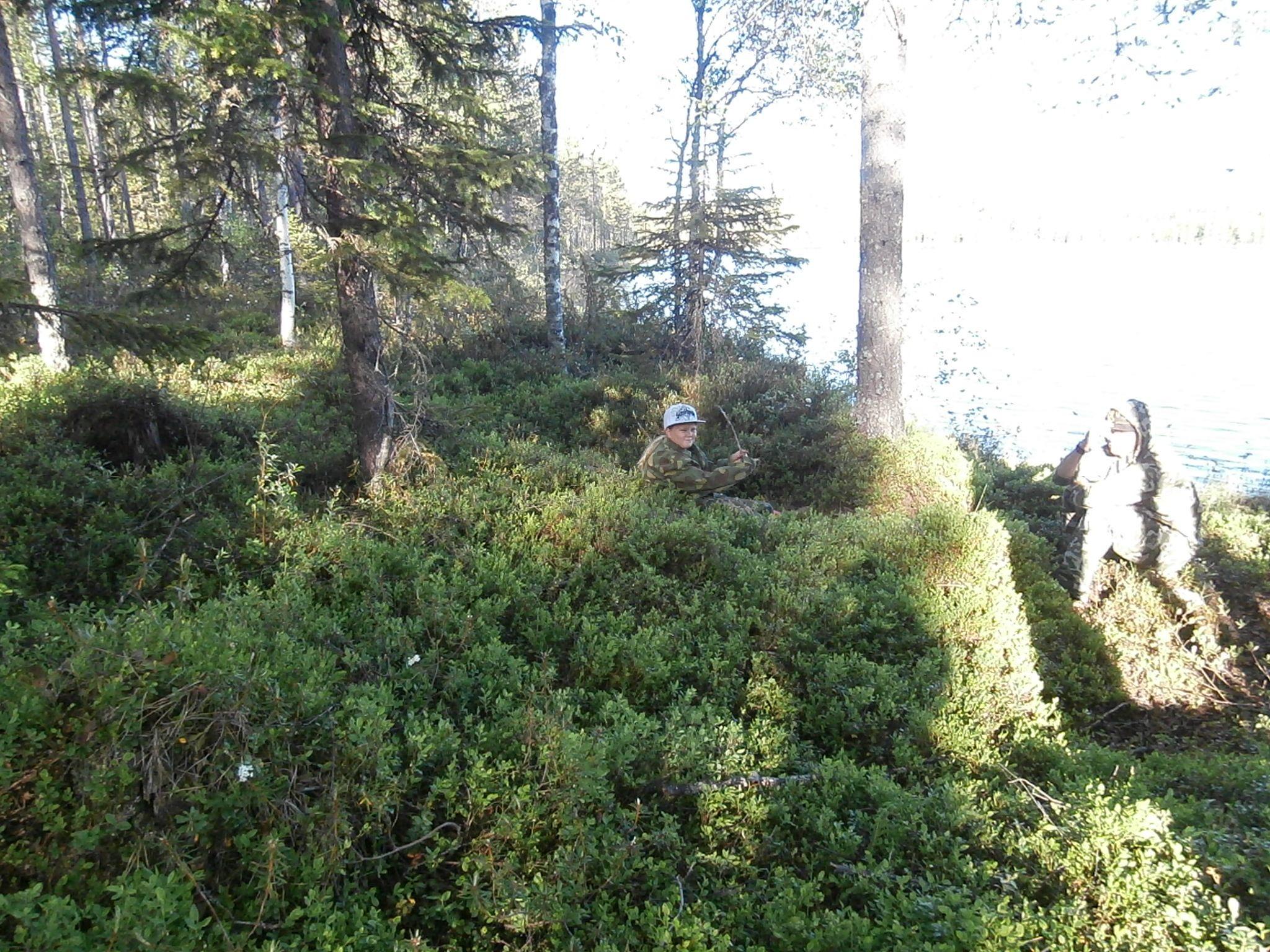 Metsä rauhoittaa, jo 15 minuutin oleskelu luonnossa auttaa poistamaan stressiä.